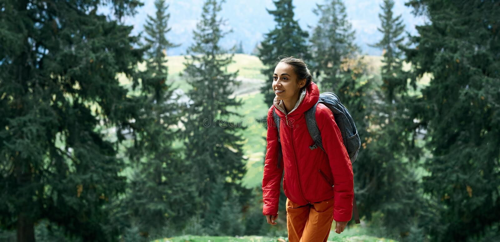 Woman hiker with small backpack wearing in red jacket and orange pants walks by trail through pine woods in the royalty free stock image