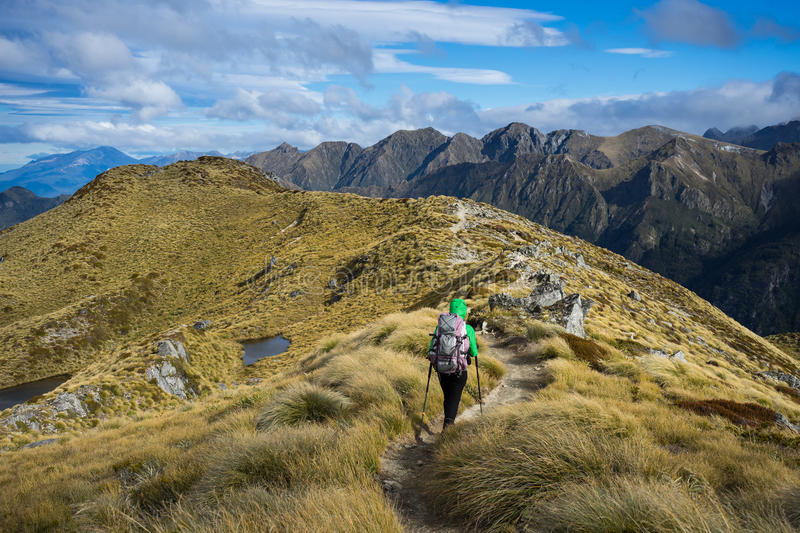 Woman hiker walking on an alpine section of the Kepler Track. One of the New Zealand Great Walks stock photography