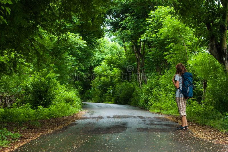 Woman hiker. With backpack stands on the road and watches lush green foliage of the tropical trees stock photography