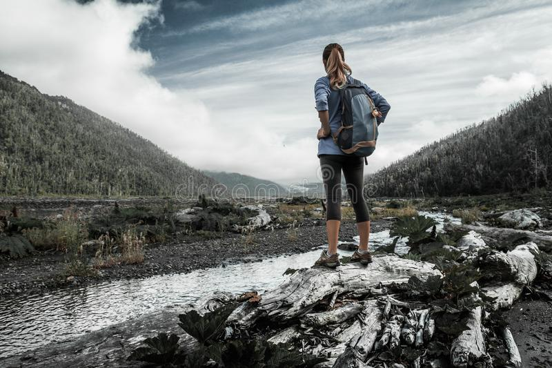 Woman hiker. Stands in the valley with dry dead trees and small river and looks into the valley royalty free stock image