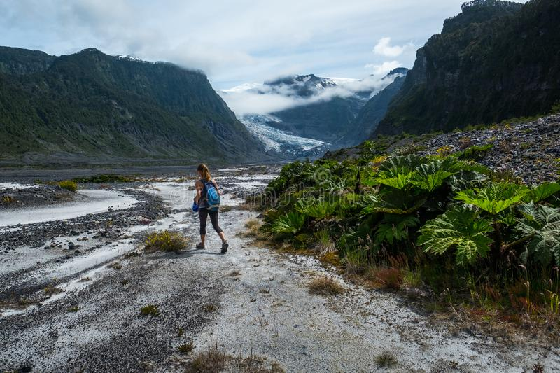 Woman hiker. Walks in the valley in the wild area with lush vegetation and glacier on the horizon royalty free stock images