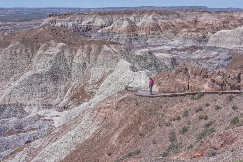 Woman Hiking Blue Mesa At The Petrified Forest royalty free stock photo