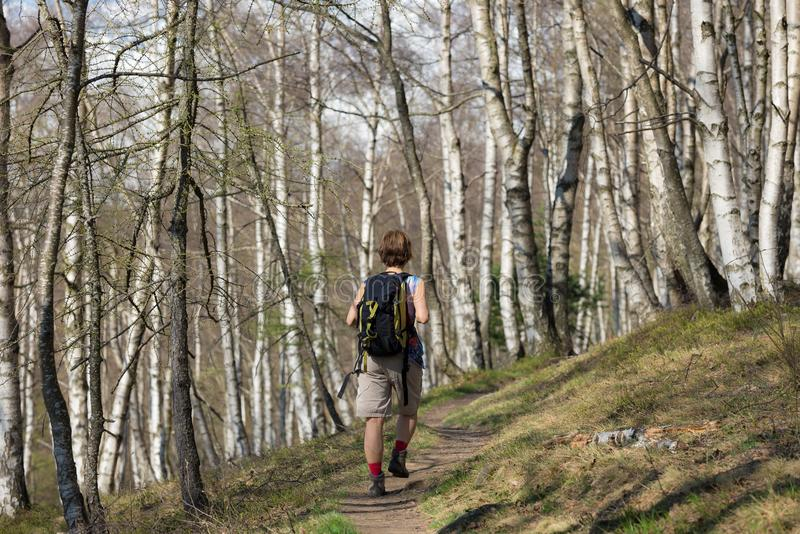 Woman hiking in the forest, one person walking in woodland, backpacking summer adventure travel, rear view, toned image stock photo