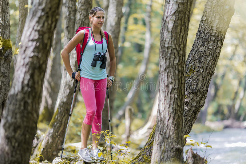 Woman hiking in the forest. Young woman hiking in the forest stock photos
