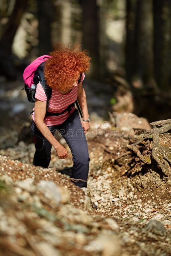 Woman hiking on a trail royalty free stock photos