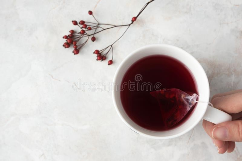 Woman hold white cup with fruity tea in tea pyramid bag. Mug and red berries on marble background. Cozy winter mood. Woman hold white cup with fruity tea in tea stock photography