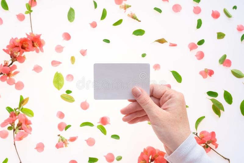Woman holding blank white business card mock up stock photos