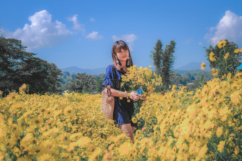 Woman holding a bouquet of flowers standing in a field of yellow chrysanthemum royalty free stock images