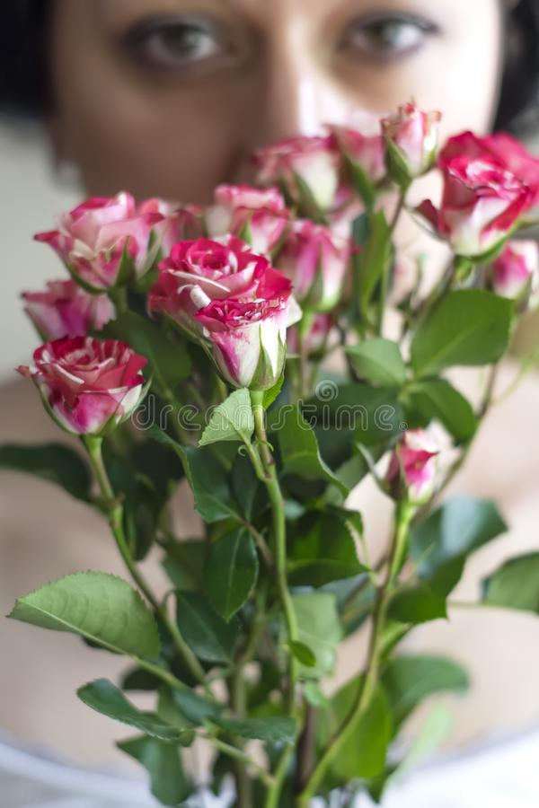 Woman holding bouquet of pink small roses stock photo