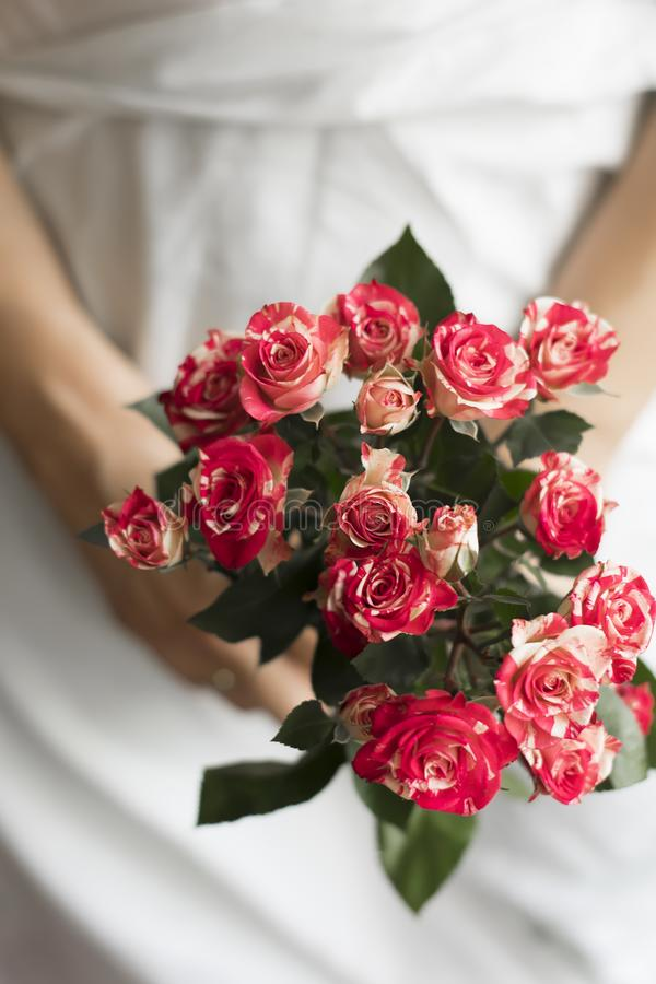 Woman holding bouquet of pink small roses royalty free stock photography