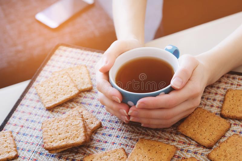 Woman holding a Cup of hot tea or coffee, lie next to cookies, close-up.  stock photography