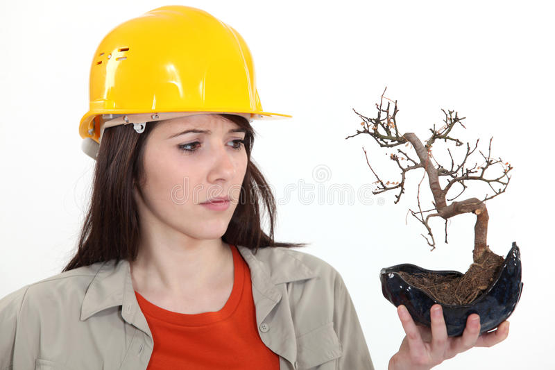 Woman Holding A Dead Plant Stock Image
