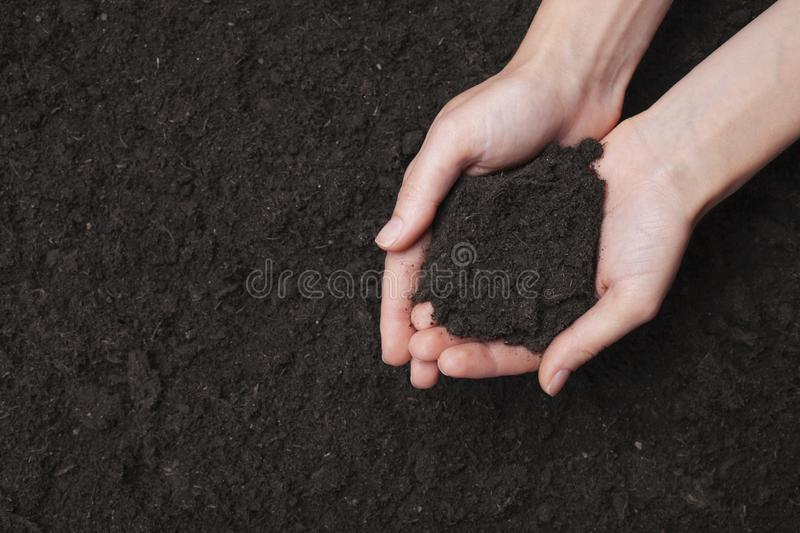 Woman holding fertile of soil in hands against ground. Top view, space for text stock image