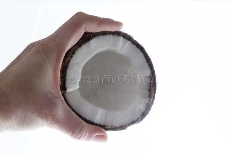 Closeup of female hand and coconut in it.Cracked coconut against white background stock photo