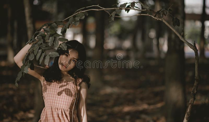 Woman Holding Green Leafed Tree stock image