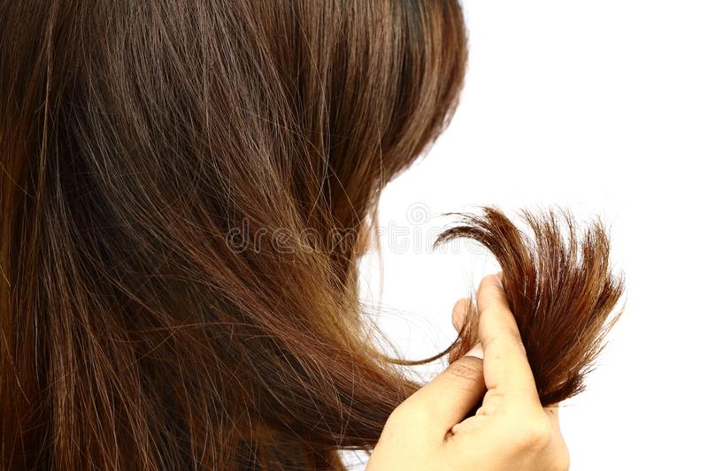 Woman holding her long hairs that make color treatments. The hairs maybe have problem split end .Should care or cut end of hairs stock image