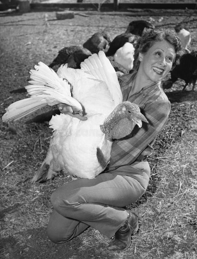 Woman holding live turkey stock image