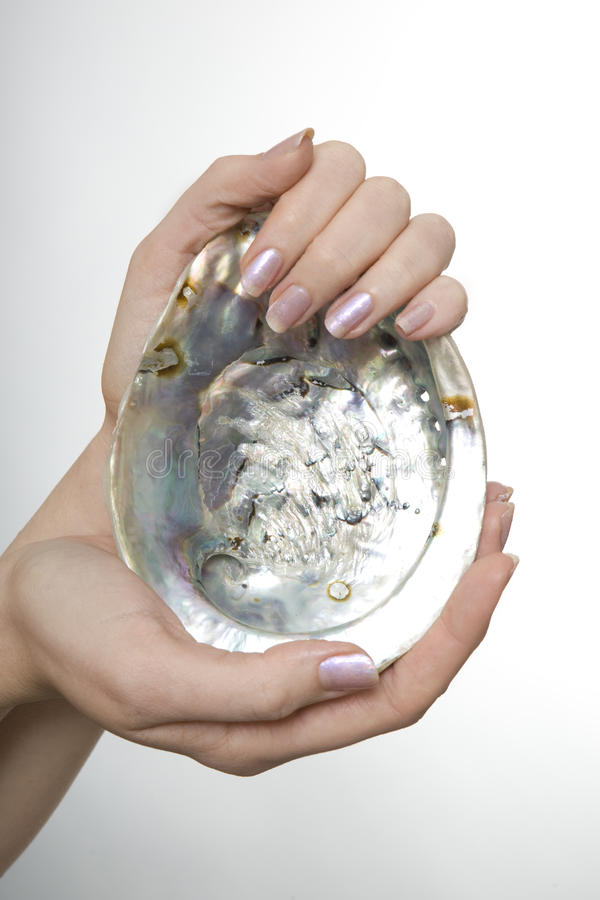 Woman Holding an Abalone Shell stock photography