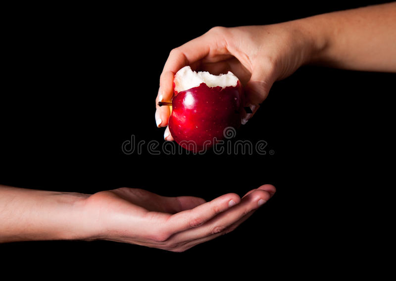 Woman holding red apple stock image