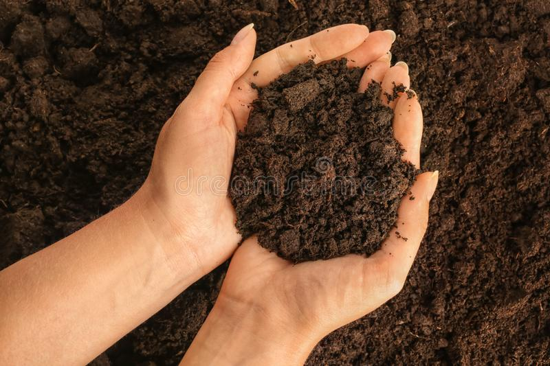 Woman holding soil, top view stock photo