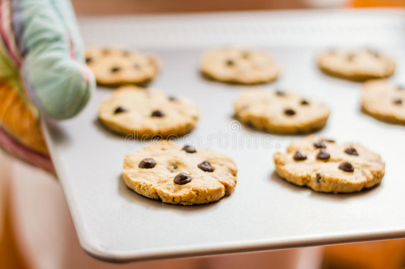 Woman holding a tray with baked cookies with kitch stock image