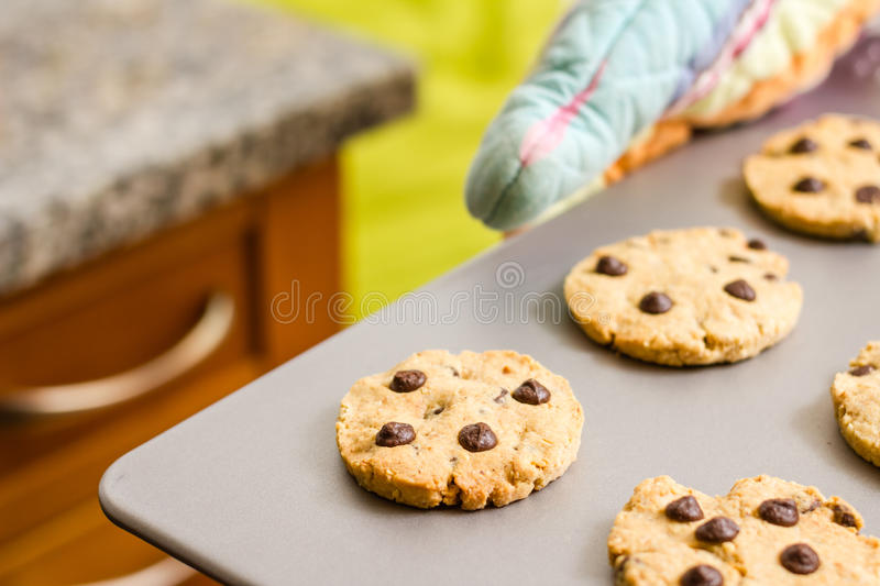 Woman holding a tray with baked cookies with kitch royalty free stock image