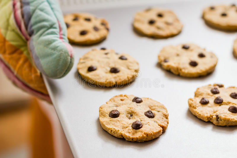 Woman holding a tray with baked cookies with kitchen gloves royalty free stock photo