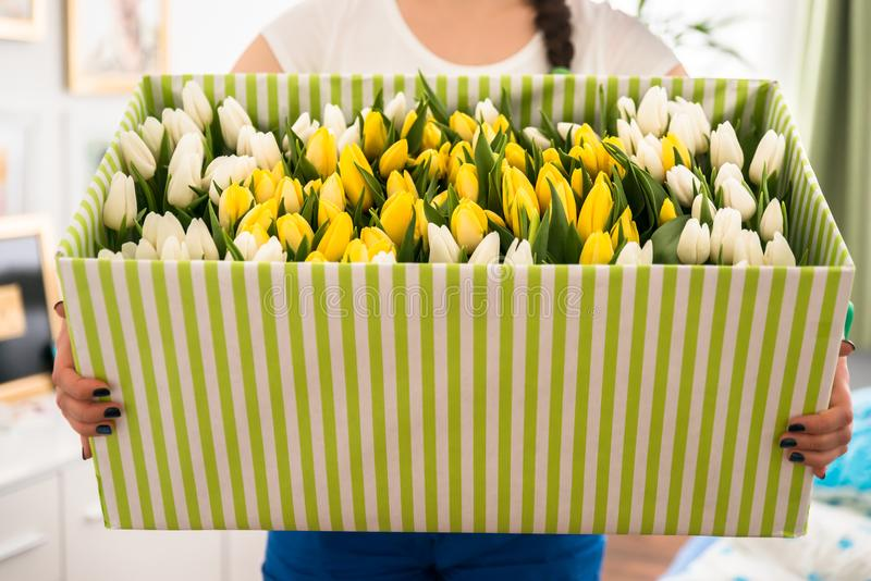 Woman Holding Tulips In The Box royalty free stock image