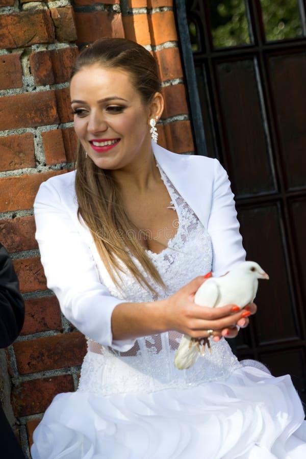 Woman holding white bird stock photos