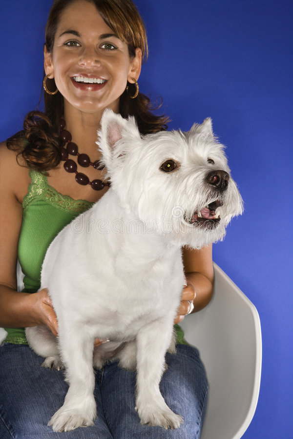 Woman holding white terrier. stock photo