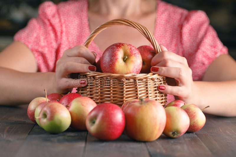 Woman is holding a wicker basket full of red apples stock photos