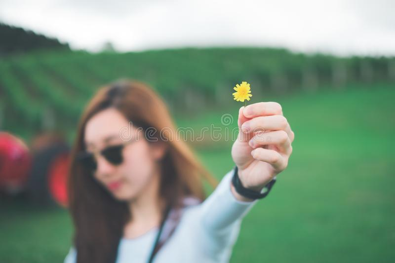 Woman Holding Yellow Petaled Flower stock images