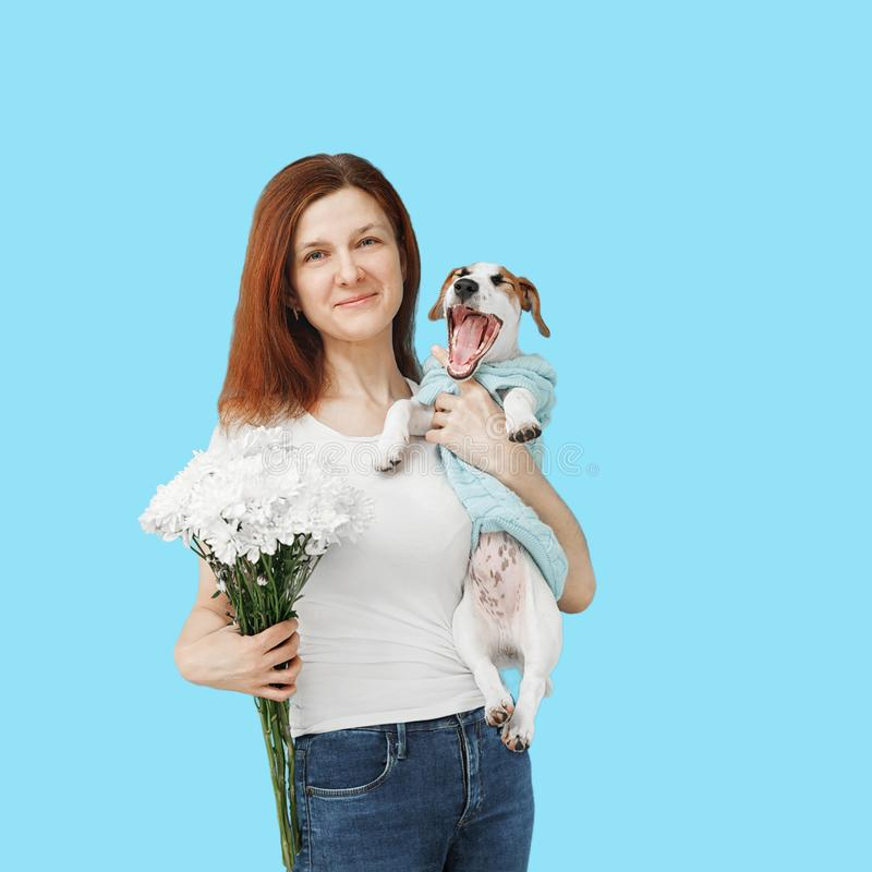 A woman holds in her hands white flowers and a puppy on a blue background stock photo