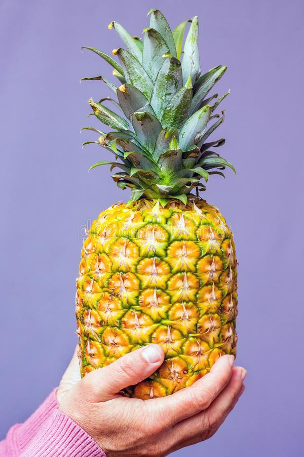 A woman holds a pineapple in the purple background_ stock photography