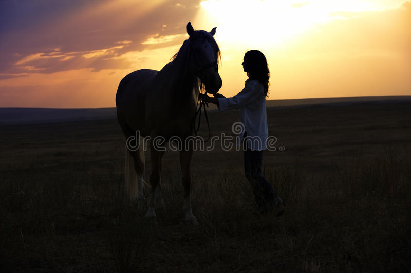 Download Woman and horse stock image. Image of bridle, pasture - 27078793