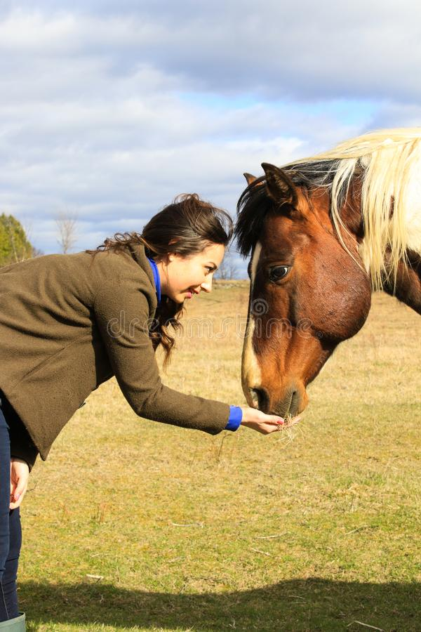 Woman and Horse Best Friend Connection stock image