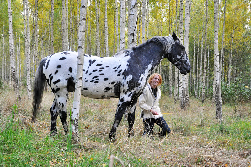 Woman with horse in a birch forest. Woman and white horse with black spots in a birch forest stock image