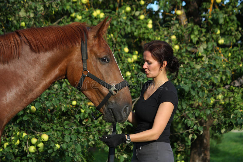 Woman and horse resting at the grazing. In summer stock photo