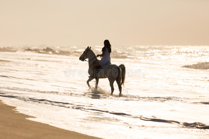 Woman horse ride water royalty free stock images