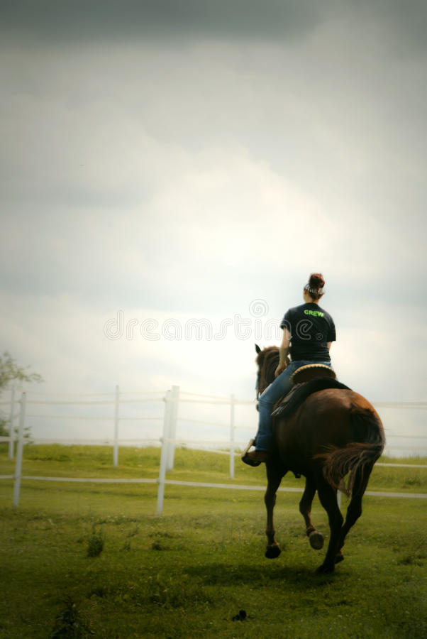 Woman on horse royalty free stock images