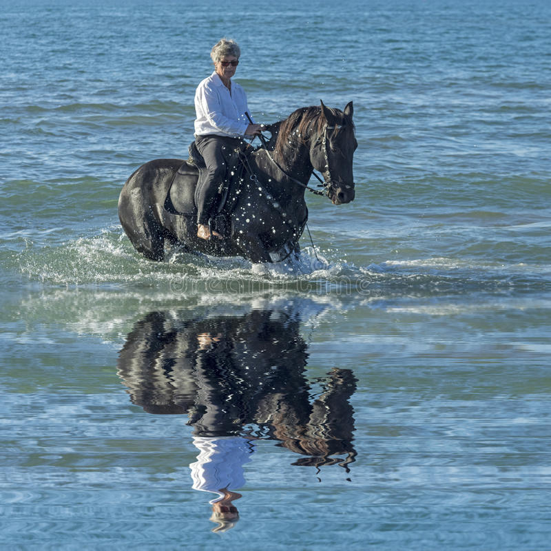 Woman horse in the sea. Woman horse riding her black stallion in the sea royalty free stock photo