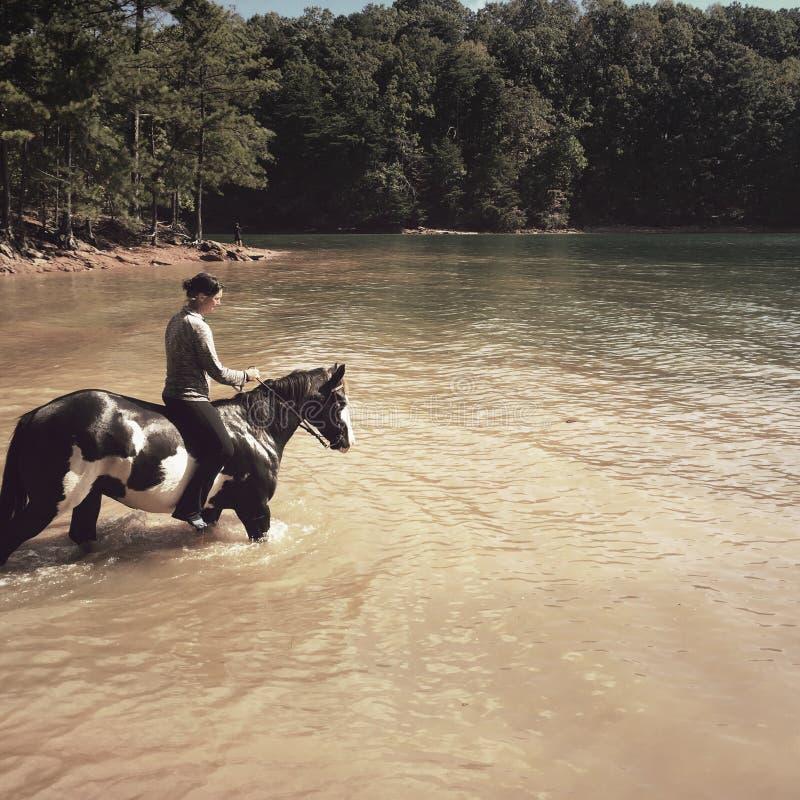 Woman on horseback, Lake Lanier Islands, Georgia stock image