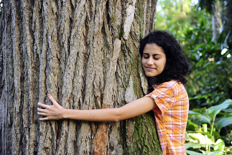 Woman hugging a tree in the forest. In love with nature: happy woman hugging a tree in the forest stock photos