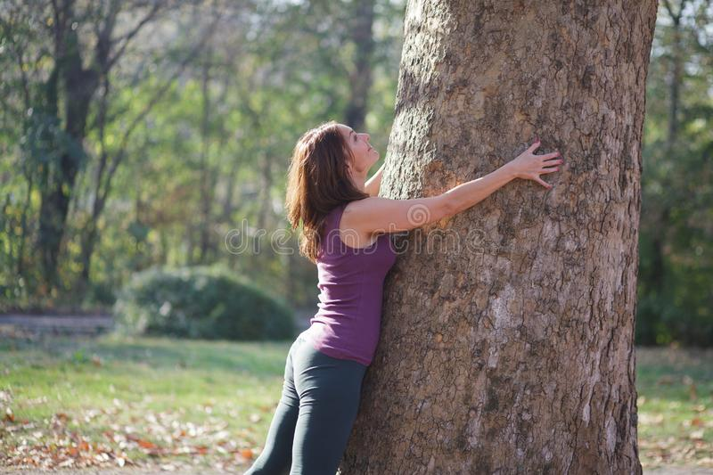 Woman hugging a tree in the park. After exercise stock photography