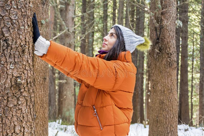 Woman hugging a tree in the winter forest .loving nature. Tree hugger.smiling woman woman hugging a tree in the winter forest stock images