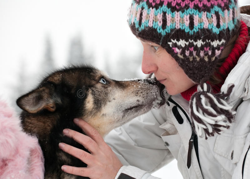Woman with husky dog royalty free stock image