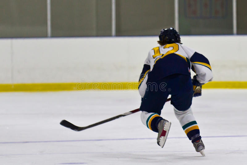 Woman ice hockey player during a game. Female ice hockey player during a game in an arena royalty free stock photos