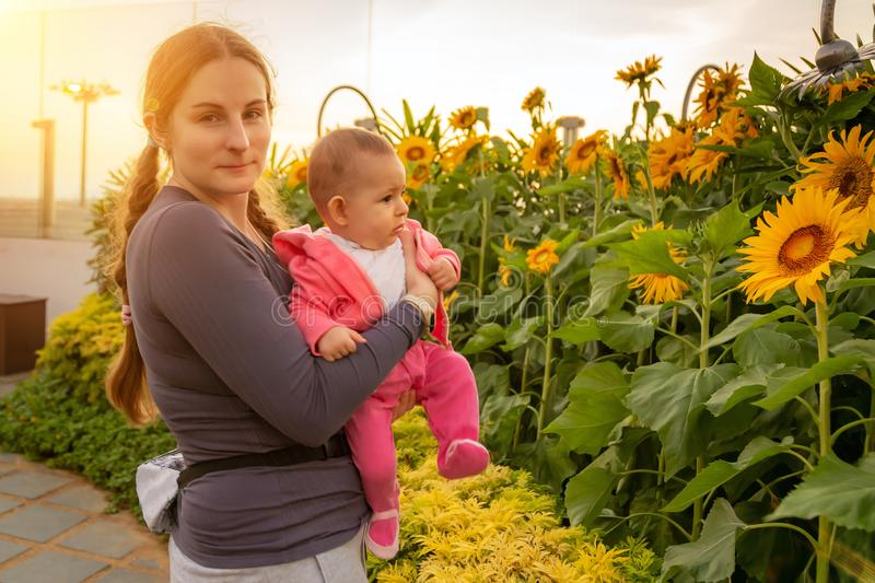 Woman with infant enjoying sunrise in the garden of sunflowers. Holding baby on the hands royalty free stock images