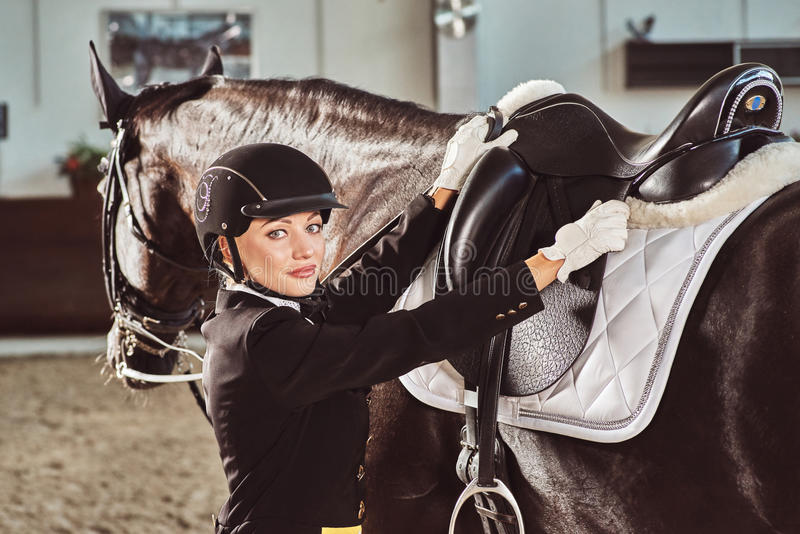 Woman jockey with his horse. In uniform for Dressage. close up royalty free stock images