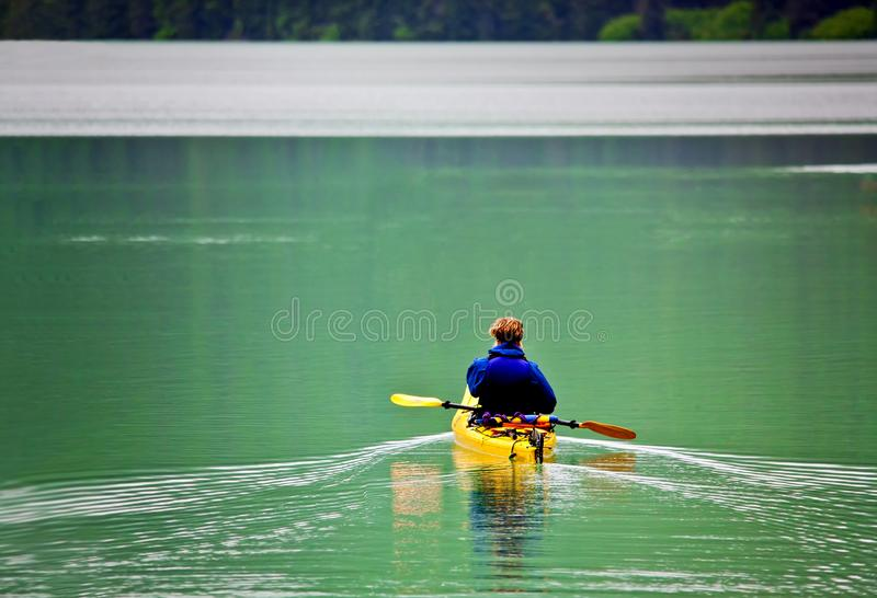 WOMAN ON KAYAK ROWING ON PEACEFUL LAKE. With forest in the background leaving smooth quake behind stock image